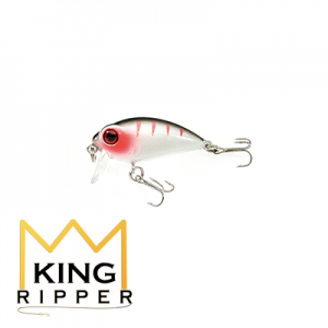 Wober 3 KING RIPPER