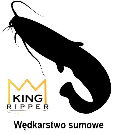 Wędkarstwo sumowe KING RIPPER